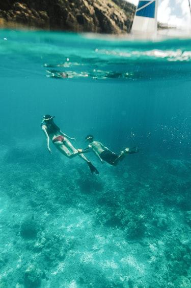Usa hawaii kealakekua bay snorkel ocean