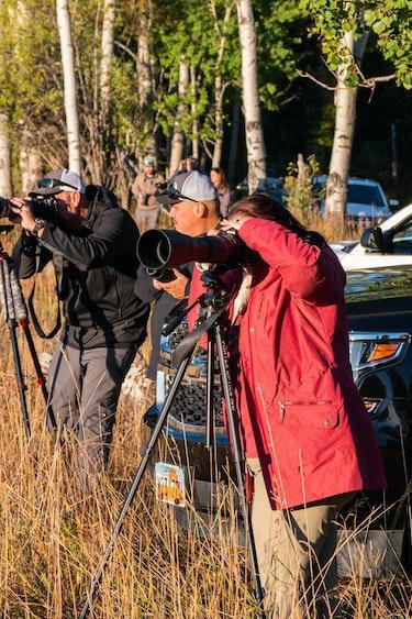 US Activiteit Easy Going 4 P1055410 Wildlife Tour Grand Teton NP