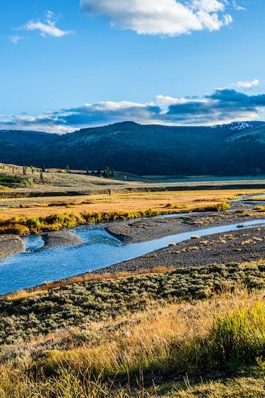 Yellowstone Nationalpark im Herbst