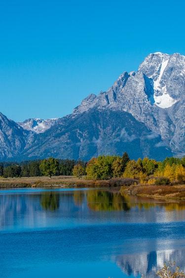 US Nationale Parken DSC6410 Grand Teton National Park Wildlife Safari
