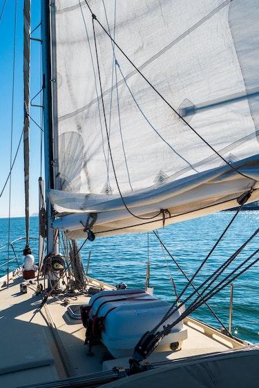 P1066600 SF Sailing