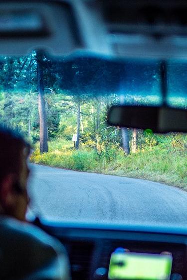 US Grand Teton NP Partner Detailed Page Activiteiten Easy Going1 P1055440 Wildlife Tour Grand Teton NP