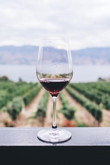 canada-food-wine-winery-vineyard