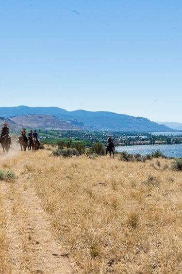 ca_couples_okanagan valley _horse riding