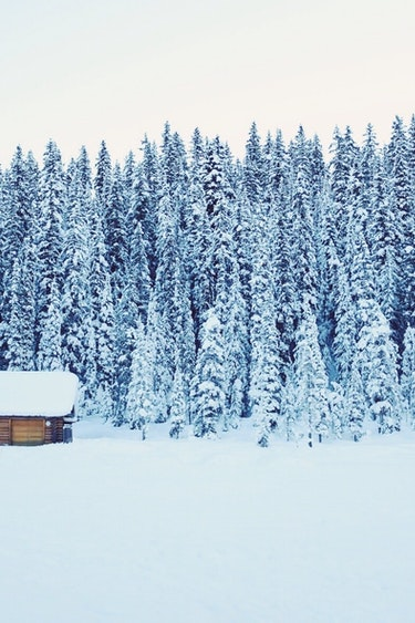 ca_couples_snowy house_accommodation