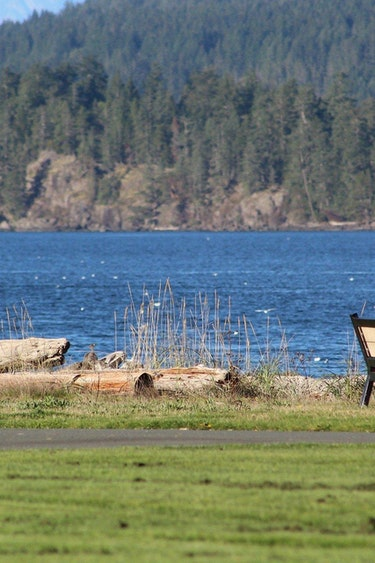 ca_couples_campbell river_view