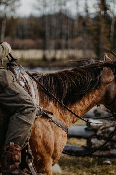 5594 Big Creek Lodge 1605003985 Trail Riding BCL 111