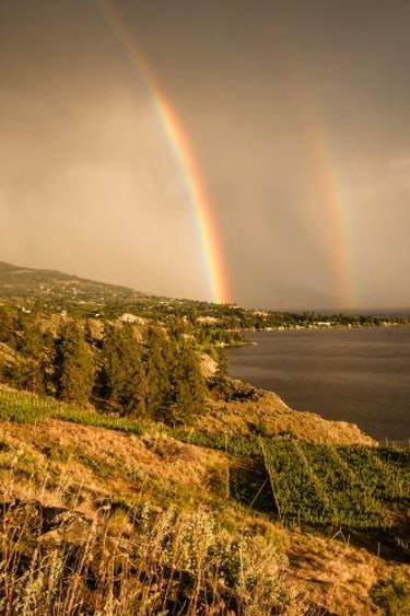 5619 Burnt Grass Vineyards 1616017756 2014 06 15 Naramata Rainbow Sunset Spring 97