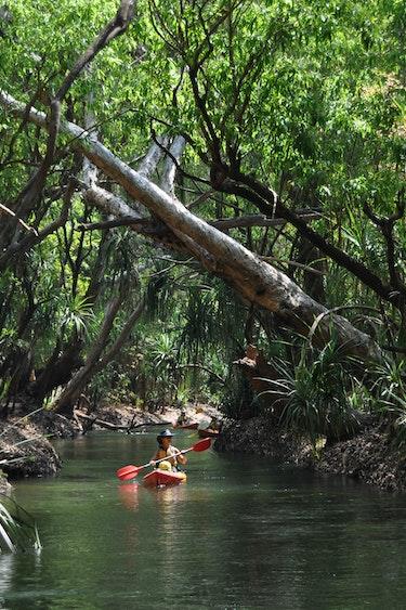 Marie cecile australie gecko kayaking