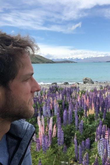 Tobias nz flower fields