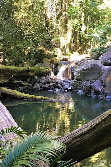Australien Lamington Nationalpark Wasserloch