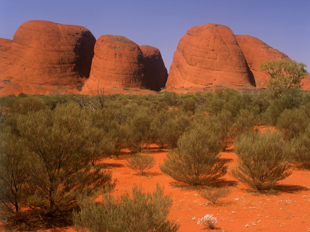 Stunning Red Center | Australia nature holiday