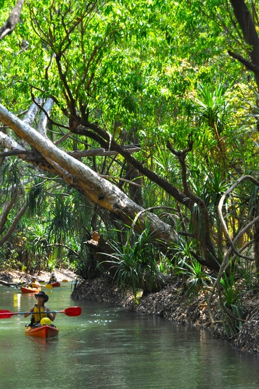 au Gecko Kayaking Katherine River region