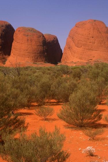 AUS blog Discover the highlights of Australia - Kata tjuta