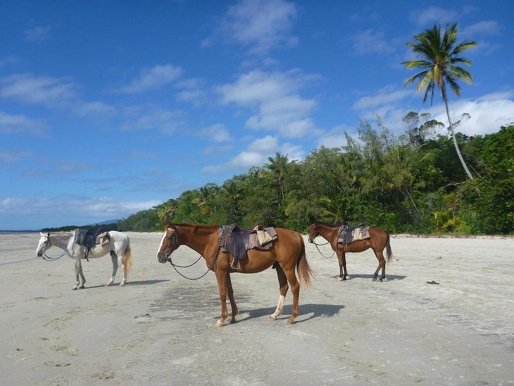 Horseback riding | Australia active holiday