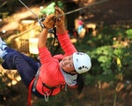 Exciting tree ziplining | Australia adventure holiday