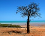 Discover Broome   Western Australia holiday