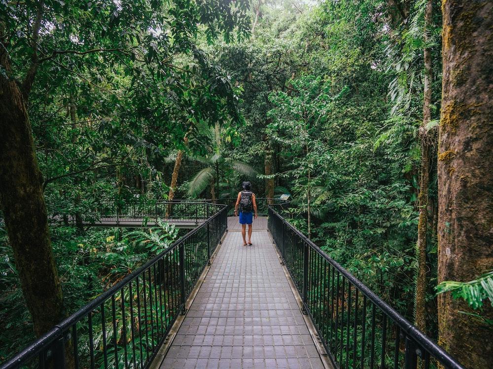 Tropical North Queensland | Australia holiday