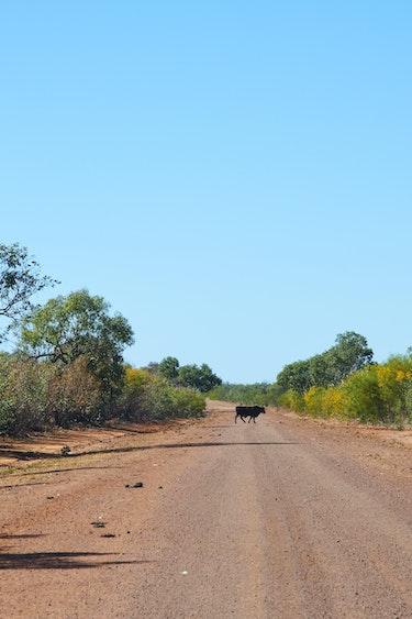 Au western australia ongkalkada road family car and route header