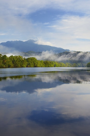 Aus daintree river cruise view family see and do easy going