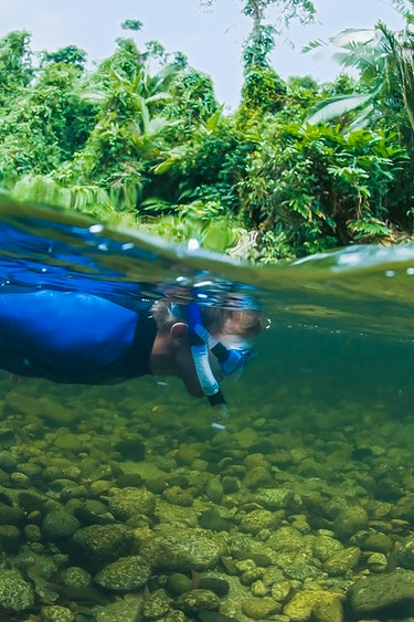 Aus port douglas rainforest snorkeling kids family see and do easy going