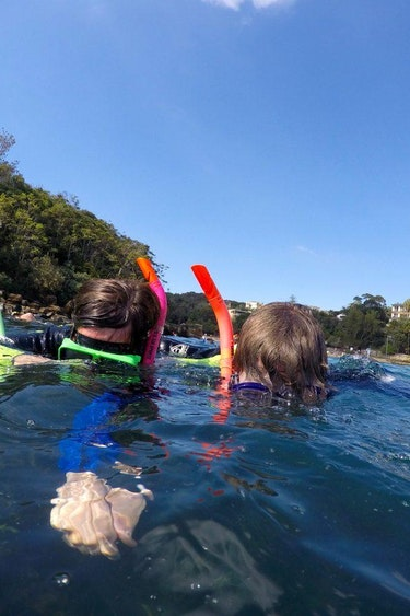 Aus sydney local tour snorkeling family see and do active
