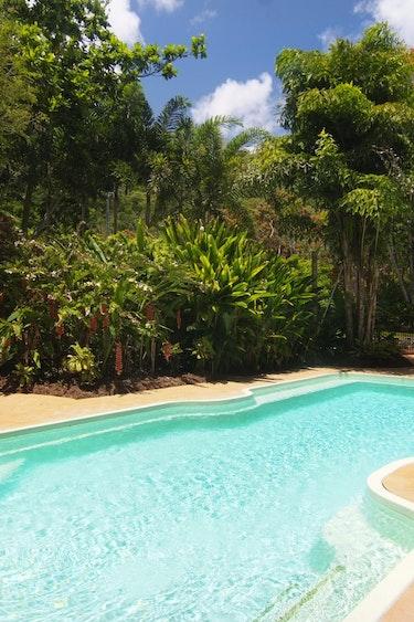 Aus port douglas pool view family stays comfortable