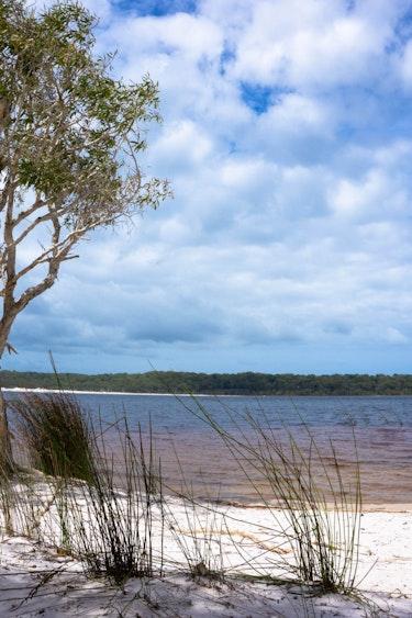 Au fraser island hike beach friends see and do adventurous