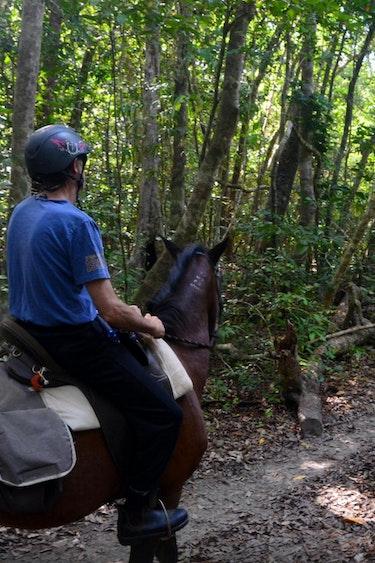 Aus active cape tribulation horse riding 1