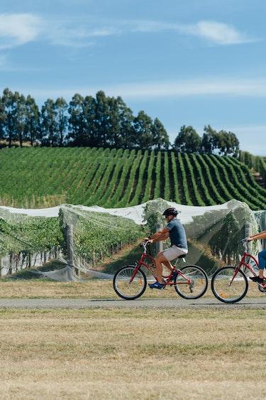 Auz on your bike ride the vines friends active 3