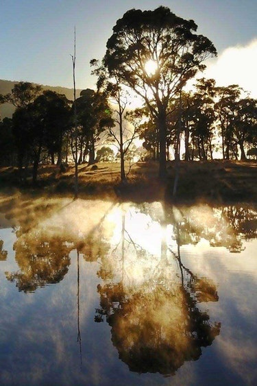 Au tasmania fishing retreat nature view friends stays comfortable