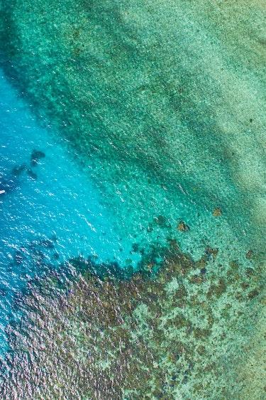 aus mission beach dive