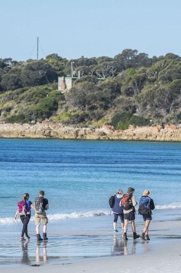 Aus tasmania guided walk beach people partner see and do adventurous