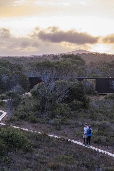 Aus tasmania guided walk nature partner see and do adventurous