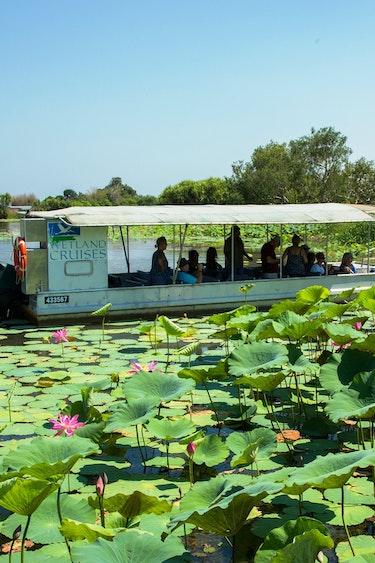 Auz corroboree billabong wetland cruises 3 partner easy going