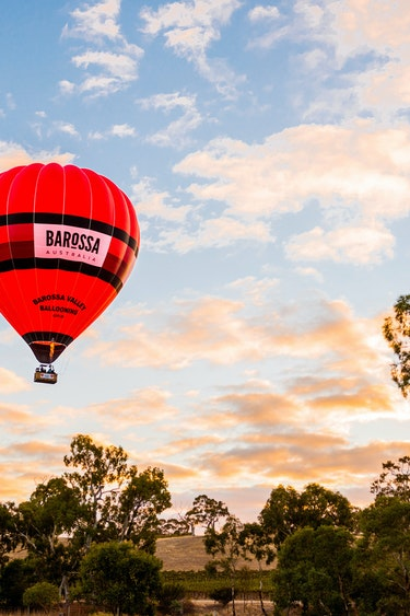 Au barossa valley balloon vineyard view solo see and do easy going