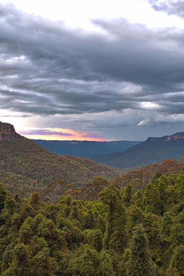 Au blue mountains nature view solo see and do easy going