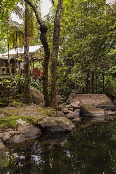 Aus daintree Secrets Rainforest Retreat house