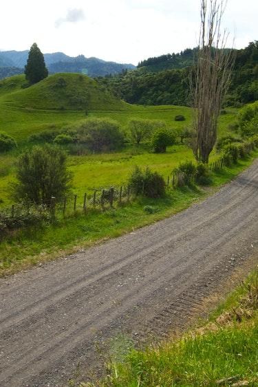 Whanganui river valley path