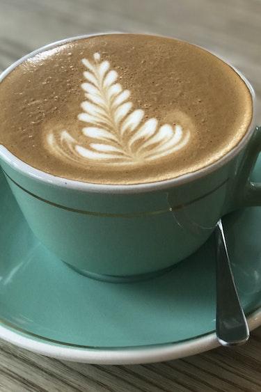 Nz wellington local cafe coffee cup food tour