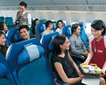 Economy flight | New Zealand holiday