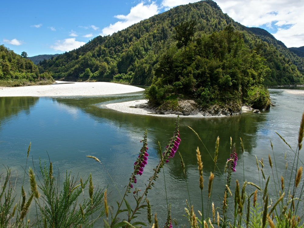 Beautiful river in the Lewis Pass | New Zealand nature