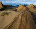 Sand dunes at Bay of Islands | New Zealand nature