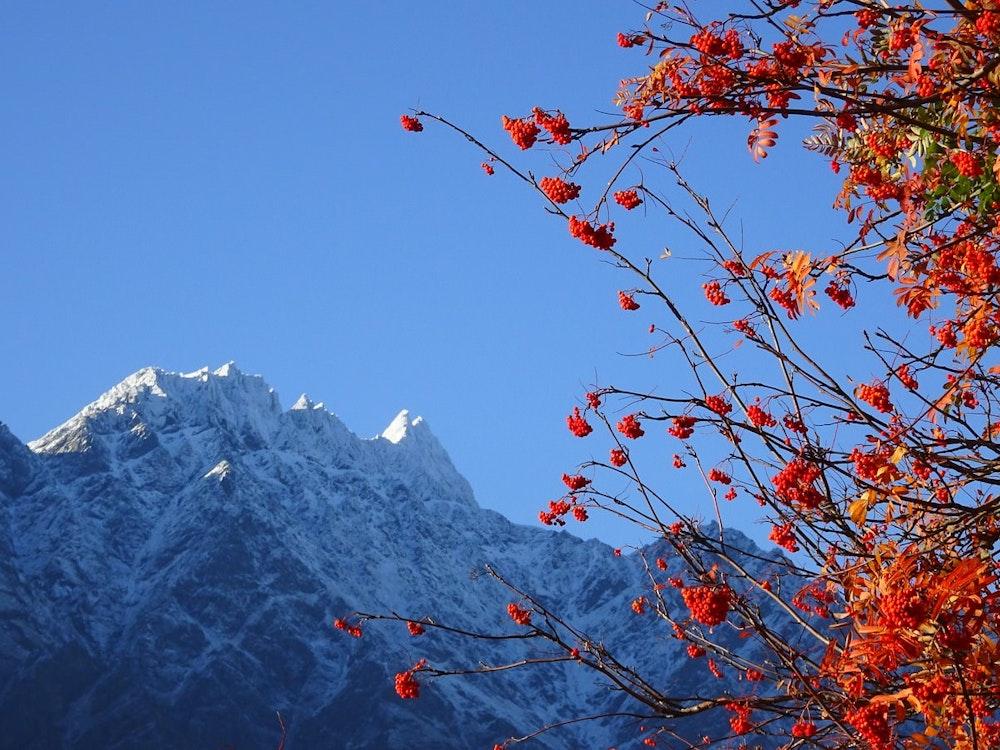Amazing mountain view | New Zealand nature