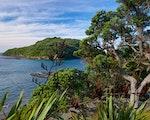Walk the coastal trails of Mahurangi Regional Park   New Zealand active holiday
