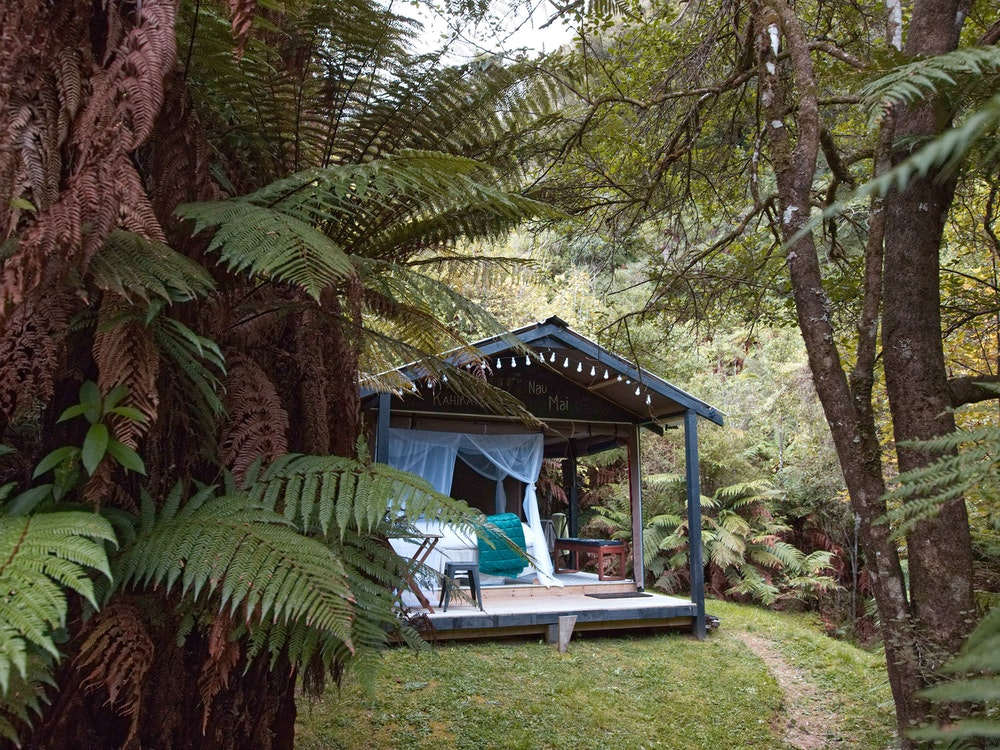 Go glamping in Te Urewera Rainforest | New Zealand nature
