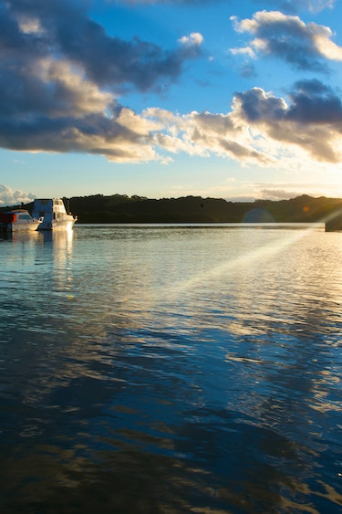 Nz hone bay of islands boats water discoverpage regions