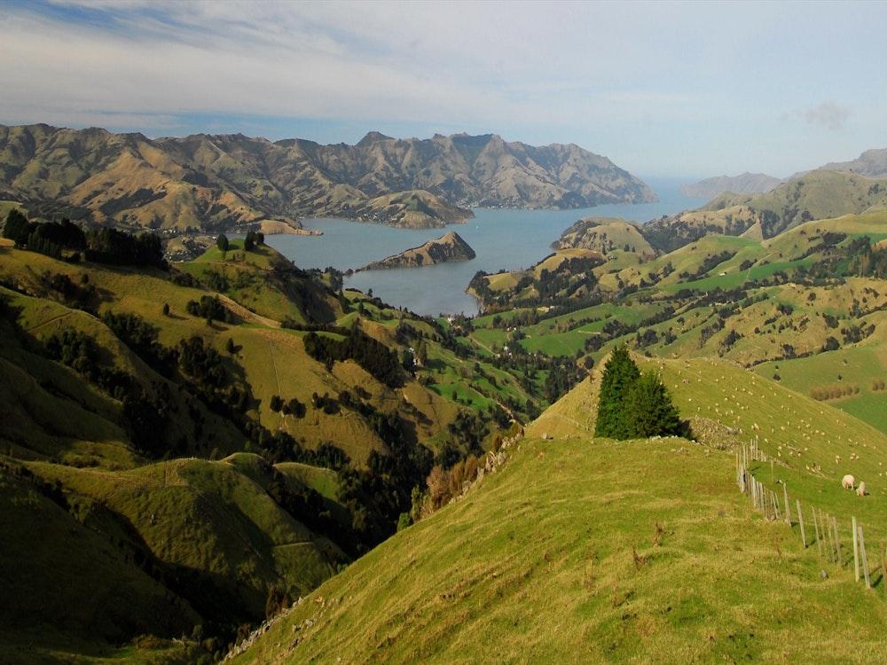 Stunning view in Marlborough region   New Zealand holiday