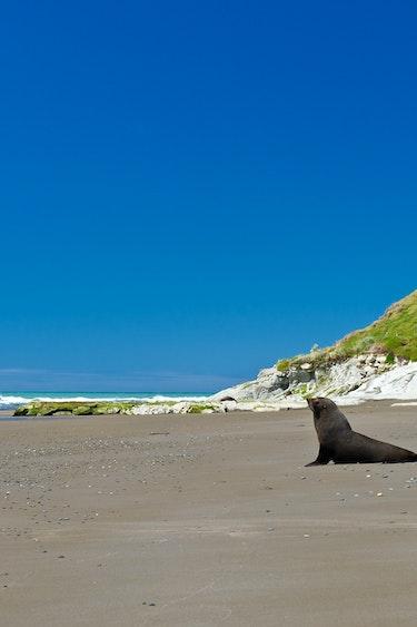 NZ- Gisborne & East Cape