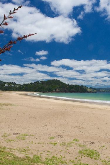 NZ - Far north